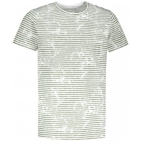 Pánské triko ALPINE PRO DEJAR MTSR548 ZELENÁ