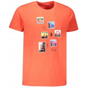 Pánské triko ALPINE PRO ARAN MTSR546 ORANŽOVÁ